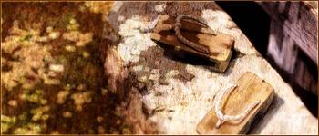 [Spoil] Chapitre 607 : The Master [BKT-MFT-Fr] Signature-Samurai_Champloo